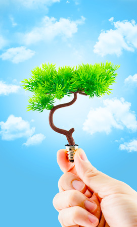 hand holding tree growing on light bulb with light blue sky with cloud,eco concept,eco power photo