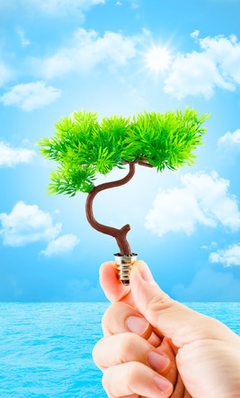 hand holding tree growing on light bulb with sun burst and light blue sky with cloud and water,eco concept,eco power. photo