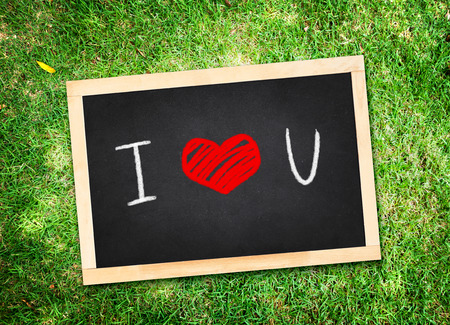 Top view of I love you  word on chalkboard lay on green grass,Love concept. photo