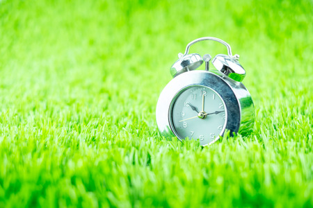 Silver alarm clock on green grass.