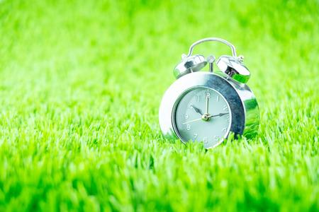 daylight: Silver alarm clock on green grass.