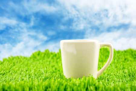 coffe: White coffee cup on green grass with blue sky,Spring Season.