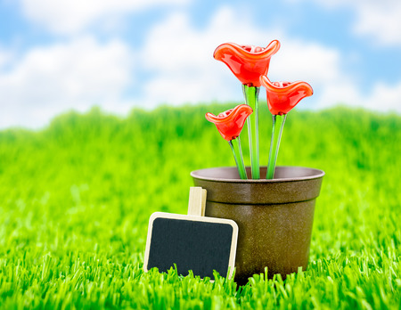 Red flower made of glass in brown flowerpot and blackboard on green grass with blue sky,Spring Season photo