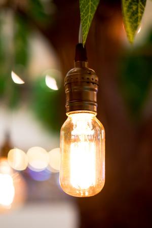 filaments: Vintage filter : Vintage lightbulb hanging on tree.