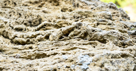 porosity: Perspective Rough porosity stone texture background.