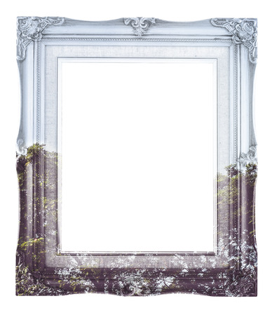 Double exposure of Vintage photo frame and tree landscape view isolated on white background, Double Exposure concept. photo