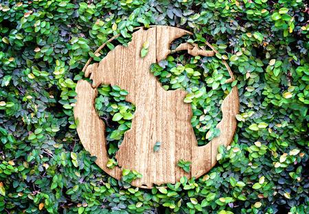 Eco concept: Houten textuur wereld pictogram op groene bladeren muur.