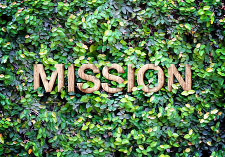 statement: Eco concept : Wood texture  Mission  word icon on green leaves wall.
