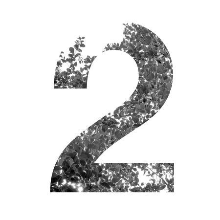 numbers abstract: two Number double exposure with black and white leaves isolated on white background,clipping path.