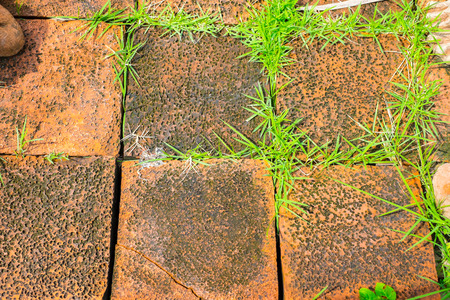 cleft: grunge orange brick block with grass growth between cleft of brick block.