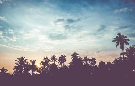paisajes: filtro de vendimia: silueta del paisaje del árbol de coco, escena tropical puesta de sol en Tailandia.