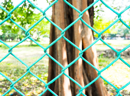 fencing wire: metal fence at park with big tree