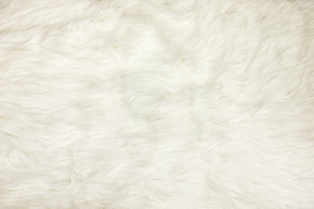 fleece fabric: Close up at white fur fabric texture background.