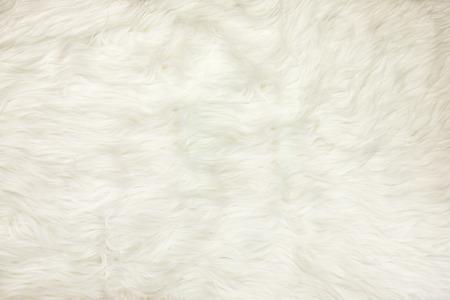 Close up au tissu blanc de fourrure texture de fond. Banque d'images