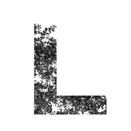 l natural: L letter double exposure with black and white leaves isolated on white background Stock Photo