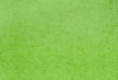 rice paper: green color mulberry paper texture background.