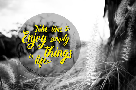 simple life: Inspiration quote :  Take time to enjoy simple things in life with field of grass flower ,Motivational typographic.