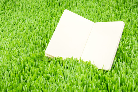 field study: Open notebook on green grass, Business and Education concept template.
