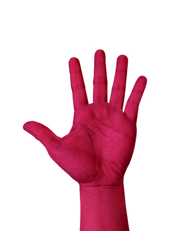 raised hand: Magenta color hand show five finger isolated on white background, hand raised Hand.