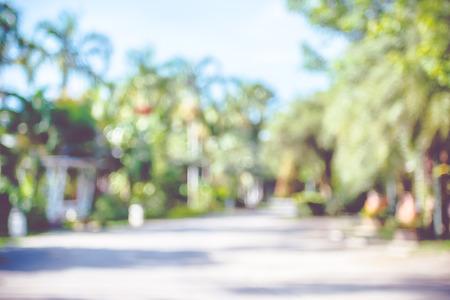 Onduidelijk beeldachtergrond: openluchtpark met boom en bokehlicht