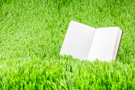 ruled paper: Open ruled paper notebook on green grass field,Eco Business concept. Stock Photo