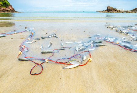 redes de pesca: Vista del paisaje de las redes de pesca la captura de peces en la playa de arena y el mar con el cielo azul.