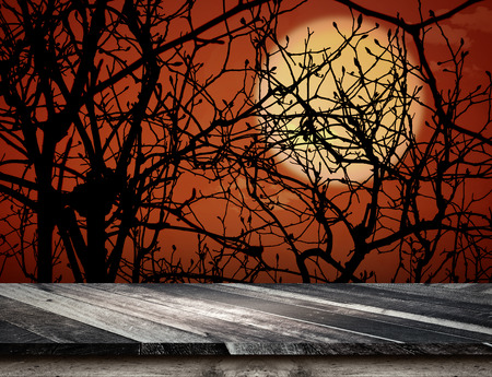 grunge tree: Empty grunge plank wooden table top at spooky tree and full moon with dead tree,Halloween holiday concept,Template mock up for display or montage of product.