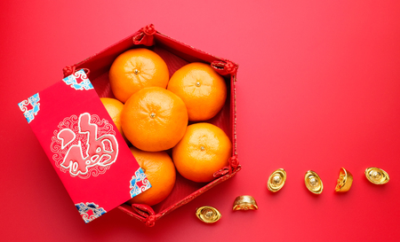 Group of orange tangerine in Chinese pattern tray and envelope packet ang pow with gold ingots on red table top. Chinese new year concep.Chinese Language on envelop is happiness,on ingot is wealthy