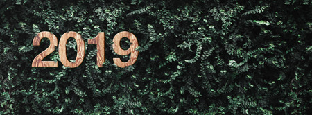 2019 happy new year wood texture number on Green leaves wall background,Nature eco concept,organic greeting card holiday.banner space for adding text Standard-Bild - 113445065