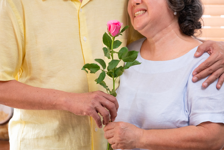 Close up male senior hand giving pink rose to wife in Valentine's Day.Happy smiling female senior snuggle with her husband