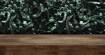 wood table with green leaf wall studio background.dark brown wooden countertop for product display design content.panoramic banner for advertise product on website.ecology concept.3d rendering Stockfoto - 128416773