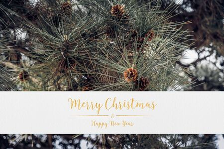 merry christmas and happy new year typo glitter text white paper and green pine tree background.holiday celebration greeting card