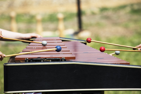 xylophone: Xylophone playing with hands. Red xylophone for marimba. Music percussion instrument on grass background. Wooden xylophone with drumsticks. Wooden vibraphone with players hands. Hit this instrument keys Stock Photo