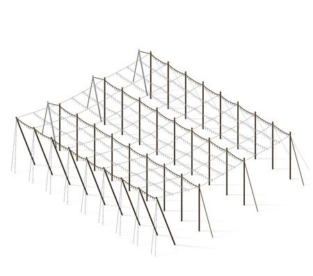 hopgarden: Hop-garden landscape in spring. Construction of beams and wires for growing hops. Agriculture landscape. Garden care hops constructions in rows. Hop garden farm field. Husbandry vector illustration.