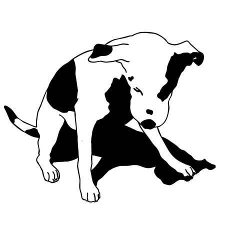 Vector black and white dog sitting. Smart and darling doggy. Mans Best Friend. Outlined cute dog. Crafty and Sly Doggie.