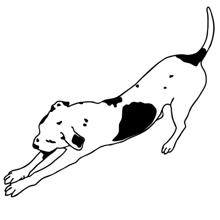 Black and white dog sitting. Smart and darling animal. Outlined cute dog. Illustration