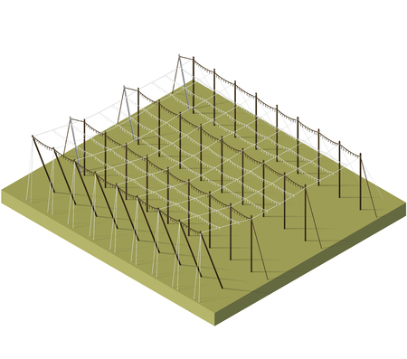 hopgarden: Hopgarden landscape in spring in isometric view. Construction of beams and wires for growing hops. Agriculture landscape with husbandry industry. Hop garden care constructions in rows on farm field. Illustration