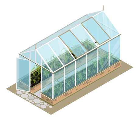 horticultural: Isometric Greenhouse with glass walls, foundations, gable roof, garden bed, white background. Vector horticultural conservatory for growing vegetable, flowers. Classic cultivate greenhouse gardening. Illustration