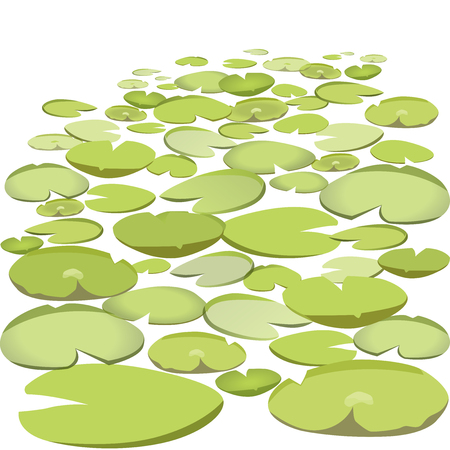 Group vector water lilies floating on water surface. Green low poly water lily. Water plants in different variants, isolated on white background. Isometric clumps growing on edge of pool and pond.