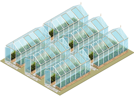 horticultural: Isometric greenhouse with glass walls, foundations, gable roof, garden bed. Mass farm for growing plants. Vector horticultural conservatory for vegetables and flowers. Greenhouse gardening cultivate. Stock Photo