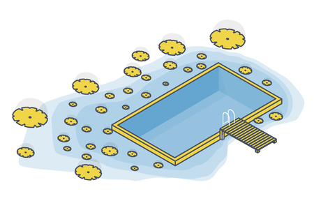 Outlined isometric garden project at bathing pond. Oasis of calm in the garden of the house. Swim pond with plants and rectangular swimming area. Natural garden swimming pool. Vector illustration of water surface