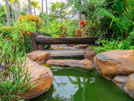 natural flower landscaping in home garden Banco de Imagens