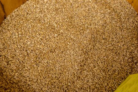 Grain in the Chinese market