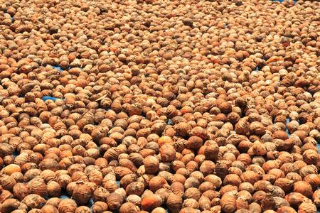 betel: Betel nuts
