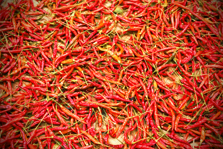 red peppers: red peppers vintage tone. Stock Photo