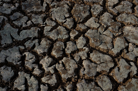 waterless: Texture of crack clay