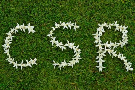 csr: flowers arranged in csr shape Stock Photo