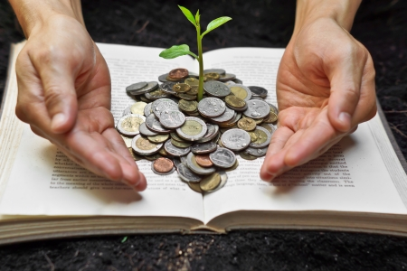 hands caring tree growing from books with coins   A big open book with coins and tree   Reading makes you richer  concept