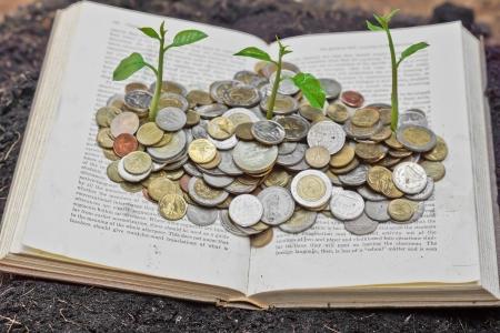 sustentabilidad: �rboles que crecen en las monedas sobre el libro Un gran libro abierto con las monedas y el �rbol de lectura te hace concepto m�s rico