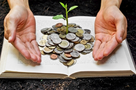 Hands caring tree growing from books with coins photo